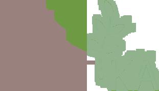 Дизайнерская одежда и аксессуары, окрашенная растениями POET.KA